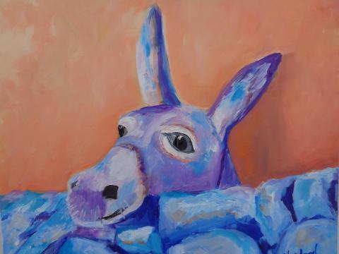 Donkey on the rocks